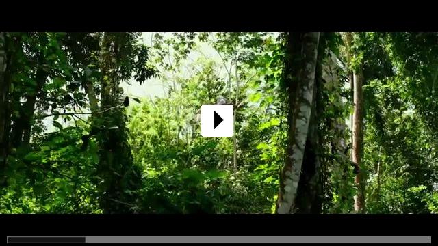 Zum Video: Triple xXx - Die Rückkehr von Xander Cage