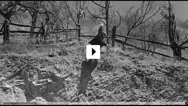 Zum Video: Bride of Frankenstein