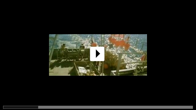 Zum Video: Der Sturm