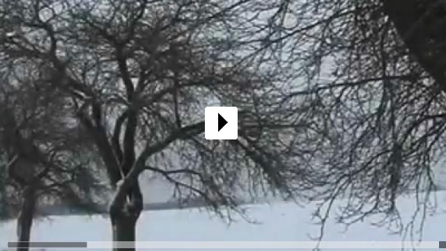 Zum Video: Der Traum lebt mein Leben zu Ende