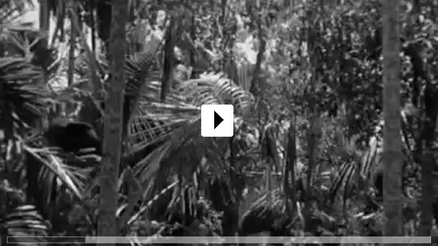 Zum Video: Schicksalswürfel
