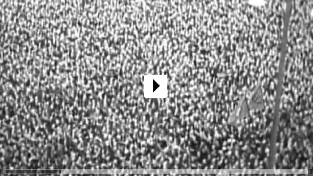 Zum Video: Portrait of Wally
