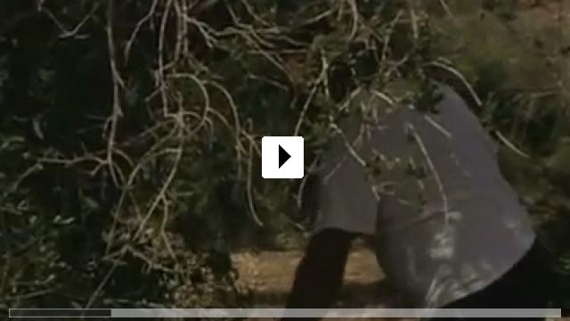 Zum Video: Ameer Got His Gun