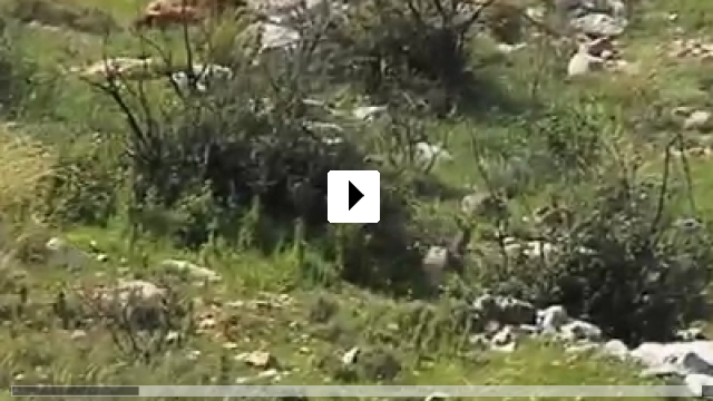 Zum Video: 5 Broken Cameras