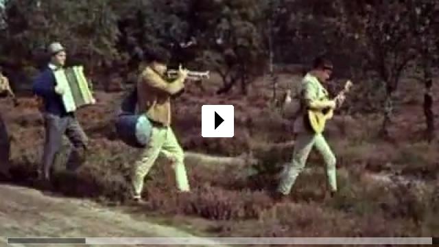 Zum Video: Wenn die Heide blüht