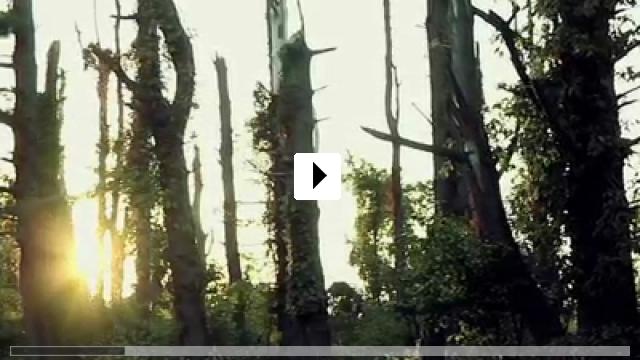 Zum Video: Hylo