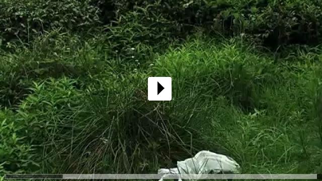 Zum Video: Der Müll im Garten Eden