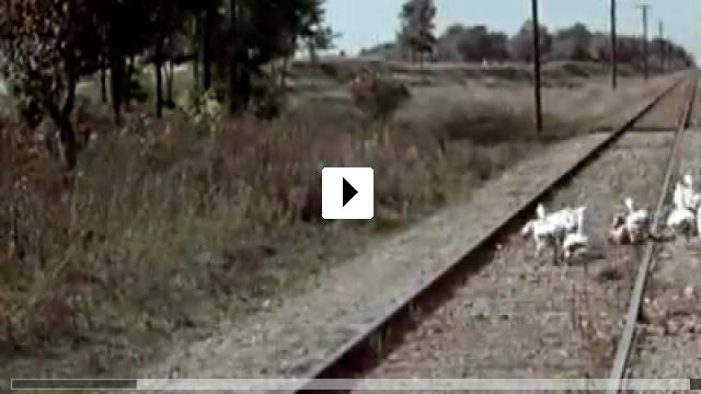 Zum Video: Ich denke oft an Piroschka