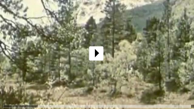Zum Video: Und ewig singen die Wälder