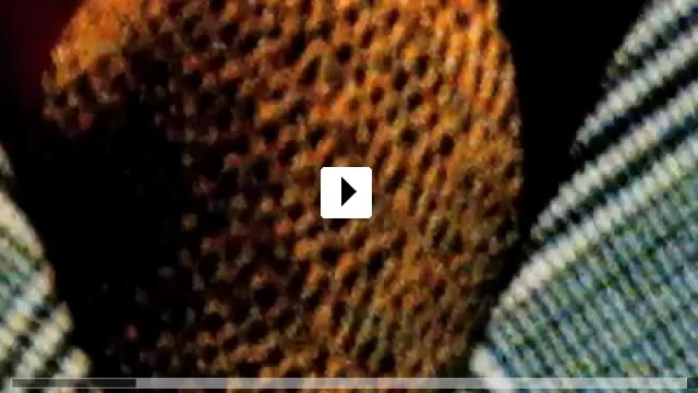 Zum Video: A Man's Story