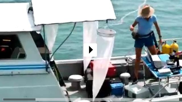 Zum Video: Amphibious 3D
