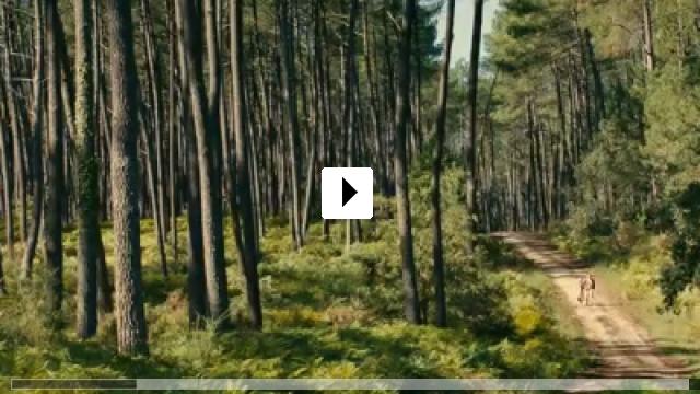 Zum Video: Thérèse Desqueyroux