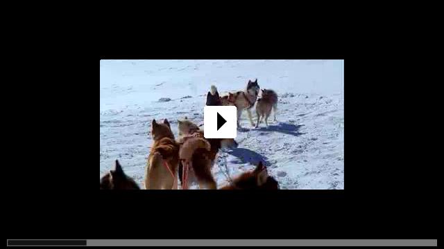 Zum Video: Antarctica - Gefangen im Eis