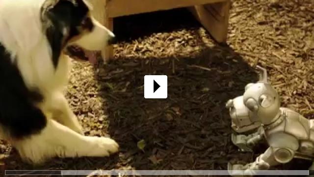 Zum Video: Fünf Freunde 2