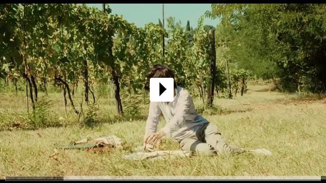 Zum Video: Die wilde Zeit