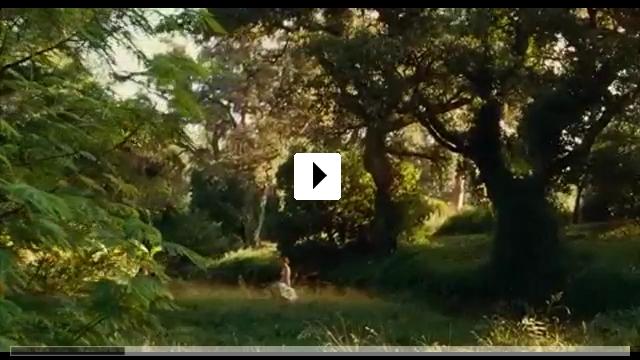 Zum Video: Renoir