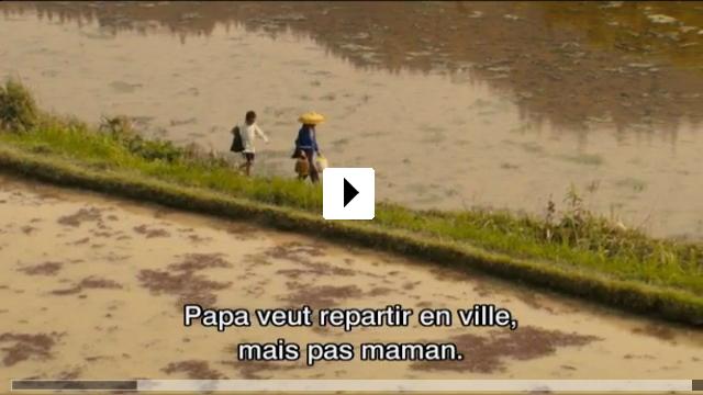 Zum Video: The Rice Paddy
