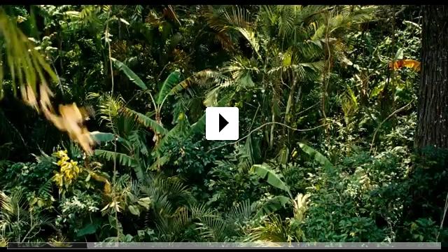 Zum Video: Auf den Spuren des Marsupilami