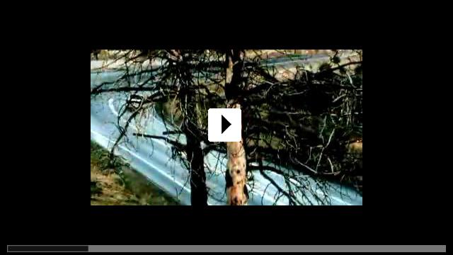 Zum Video: Unbekannter Anrufer