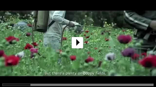 Zum Video: Jardin de Amapolas – Mohnblumenwiese