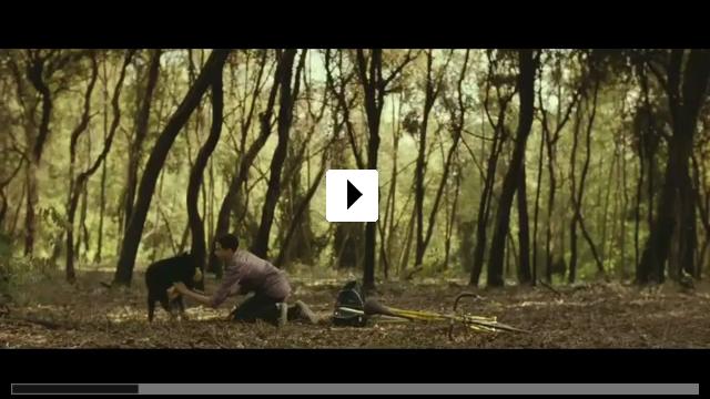 Zum Video: Animals