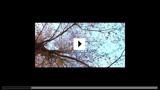 Zum Video: Wie in der Hölle