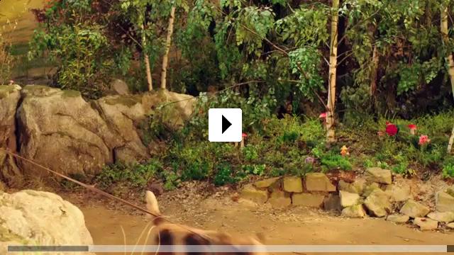 Zum Video: Pettersson und Findus - Kleiner Quälgeist, große...schaft