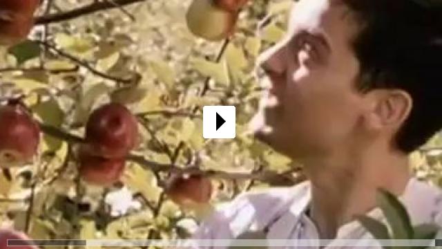 Zum Video: Gottes Werk und Teufels Beitrag