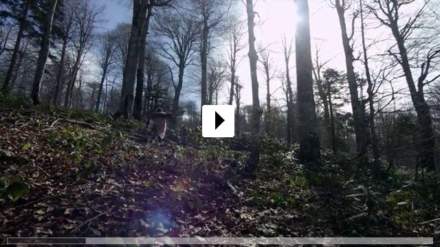 Zum Video: Yunus Emre - Die Stimme der Liebe