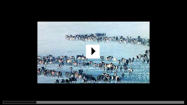 Zum Video: Der weiße Planet