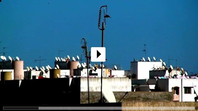 Zum Video: Transmitting