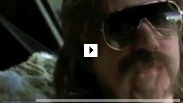 Zum Video: Kleine Haie