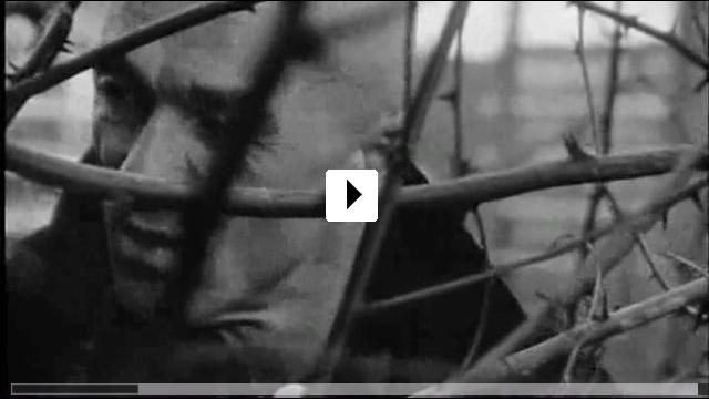 Zum Video: Zownir: Radical Man