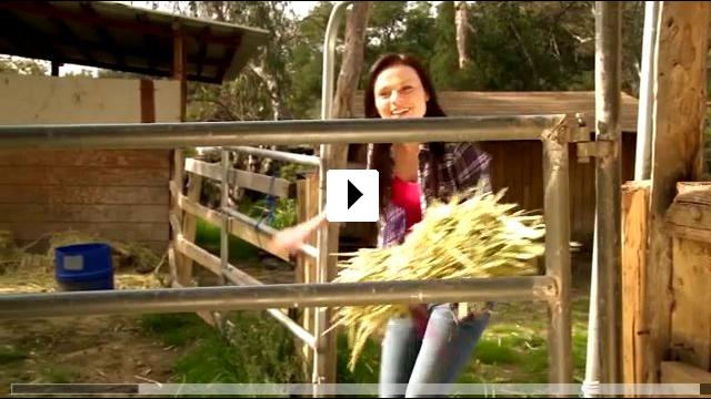 Zum Video: Das Geheimnis des Ponys