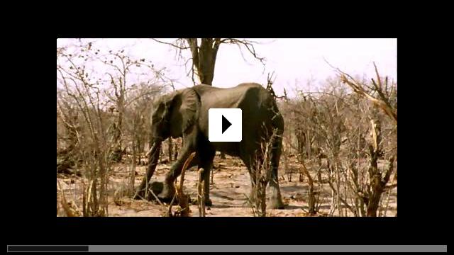 Zum Video: Unsere Erde - Wunder des Lebens