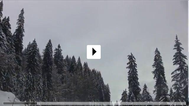 Zum Video: Die große Reise des Akkordeons