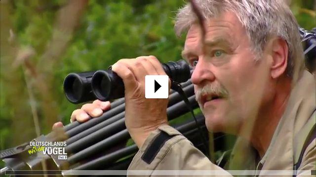 Zum Video: Deutschlands wilde Vögel Teil 2 - Die Reise geht weiter