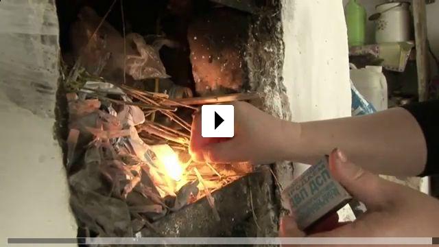 Zum Video: Flowers of Freedom