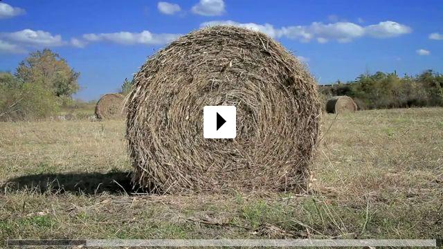 Zum Video: New Offenburg - Die letzten Badener der USA