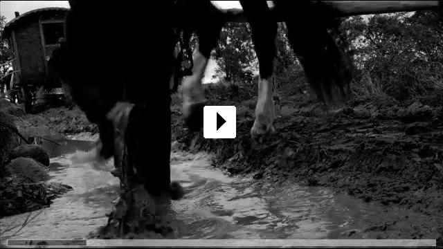 Zum Video: Papusza - Die Poetin der Roma