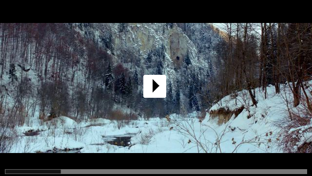 Zum Video: The Timber