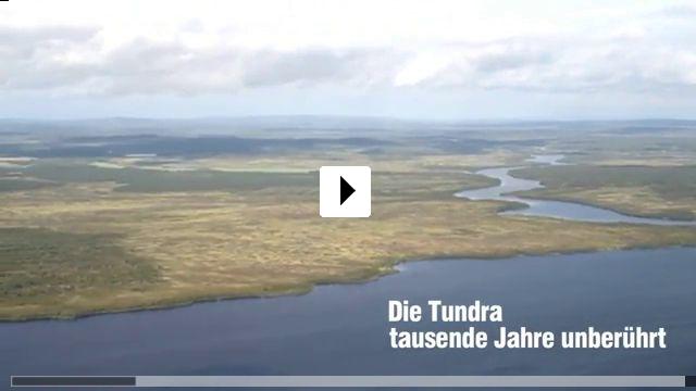 Zum Video: Die Hüter der Tundra