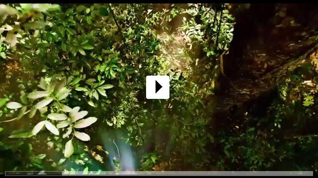 Zum Video: Afrika - Das magische Königreich