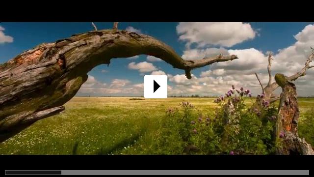 Zum Video: Die neue Wildnis - Große Natur in einem kleinen Land
