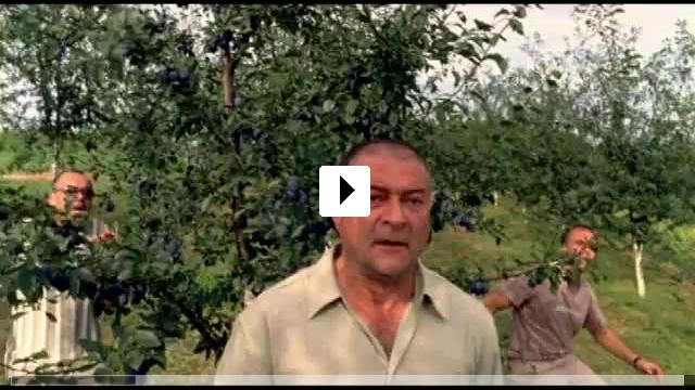 Zum Video: Gucha