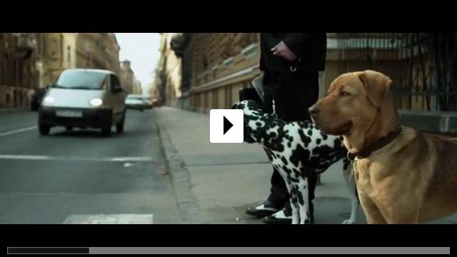 Zum Video: Underdog