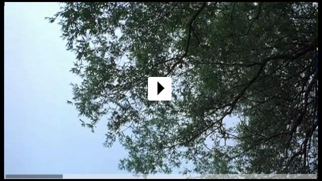 Zum Video: Yella