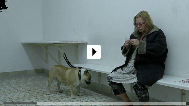 Zum Video: Am Kölnberg
