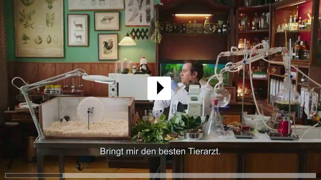 Zum Video: Niyazi Gül Dörtnala