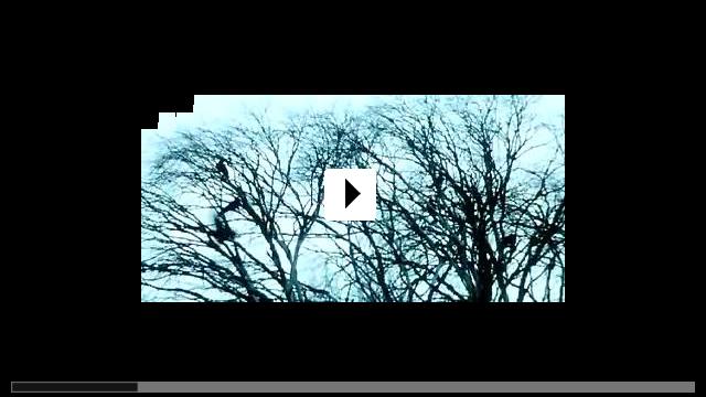 Zum Video: Jindabyne - Irgendwo in Australien
